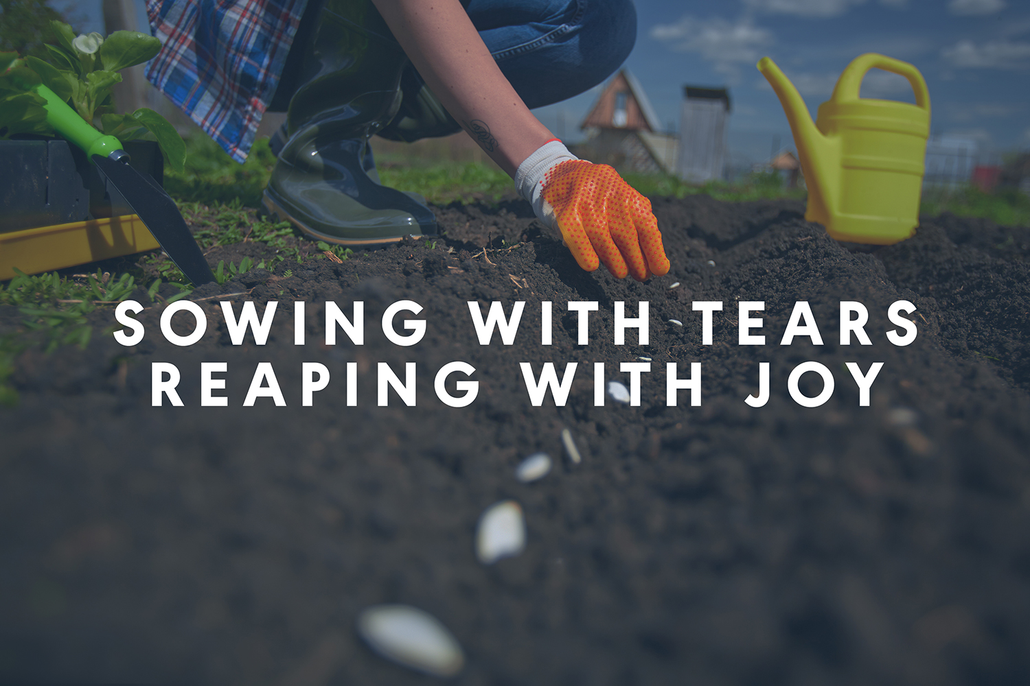 Sowing with tears, reaping with joy
